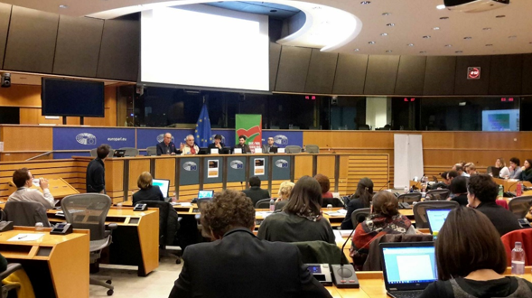 Ensuring the Right to Energy for all Europeans
