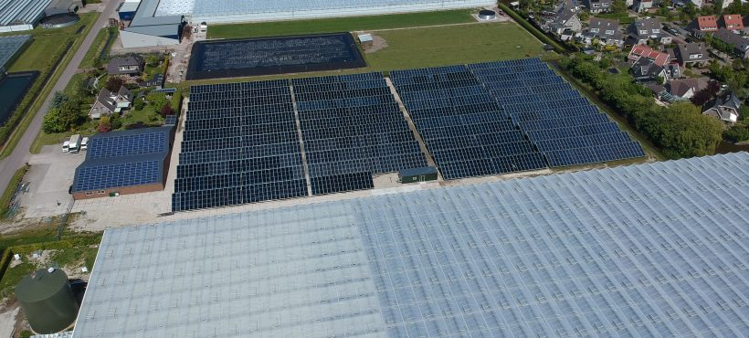 The largest solar process heat system in Europe launched in the Netherlands
