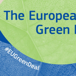 Step up the ambition: the European Green Deal