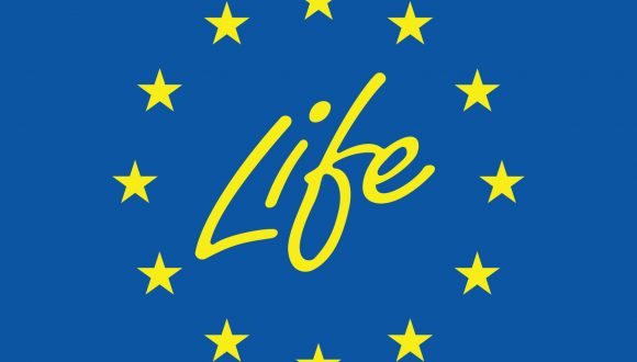 Joint action for the future of the LIFE programme