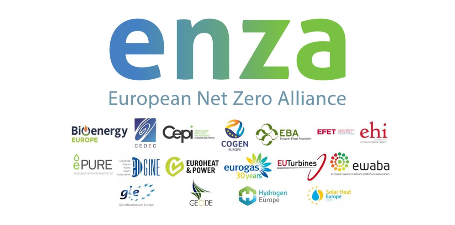Banner website_ENZA launch