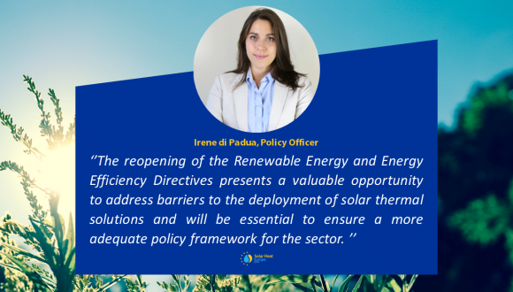 Editorial – New ambitions blooming in the EU energy field